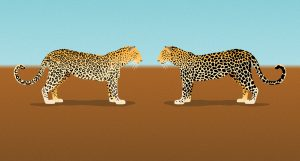 Leopard changing it's spots illustration